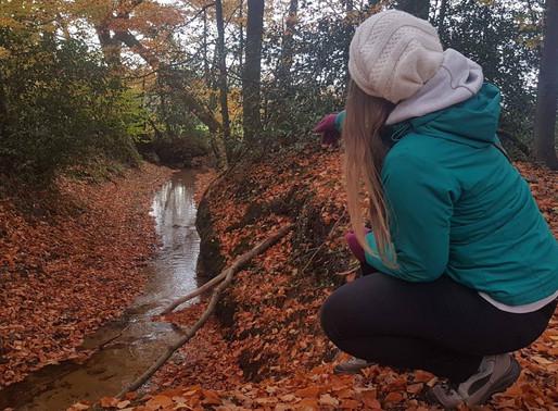 De stem van de Herfst