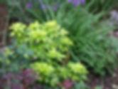 Garden Consultancy Sandhurst Crowthorne
