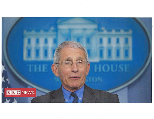 Dr Fauci  two.jpg