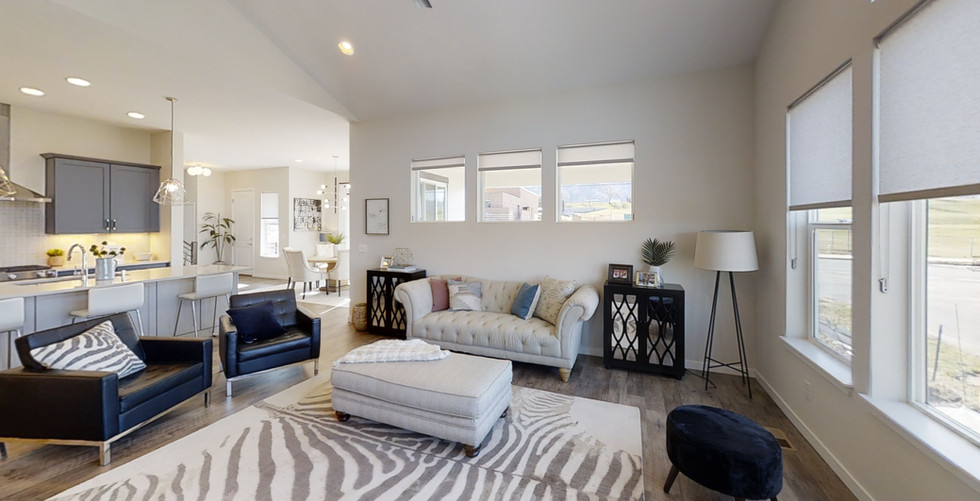 Paired-Home-at-Ulysses-Park-Living-Room.