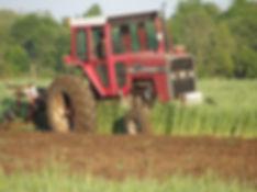 2016 05 23 053 Plowing in rye.JPG