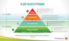 Plant-Health-Pyramid-Complete-Infographi