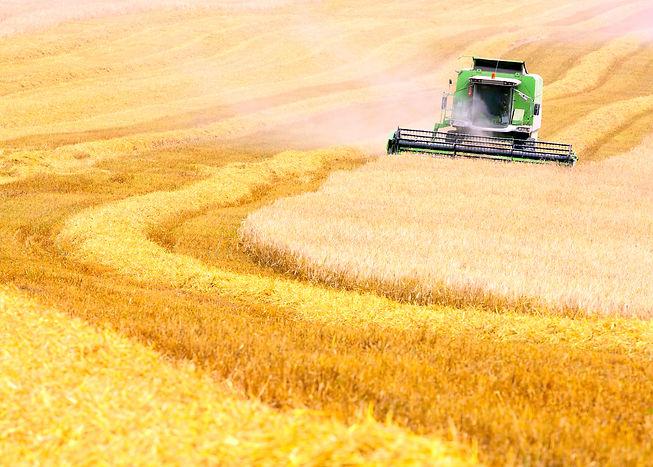 Kempf Shares New Farming Vision