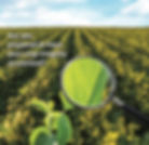 Are Your Crops And Farms Ready For Instant Analysis