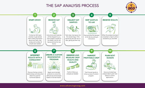 Plant Sap Analysis AEA.jpg