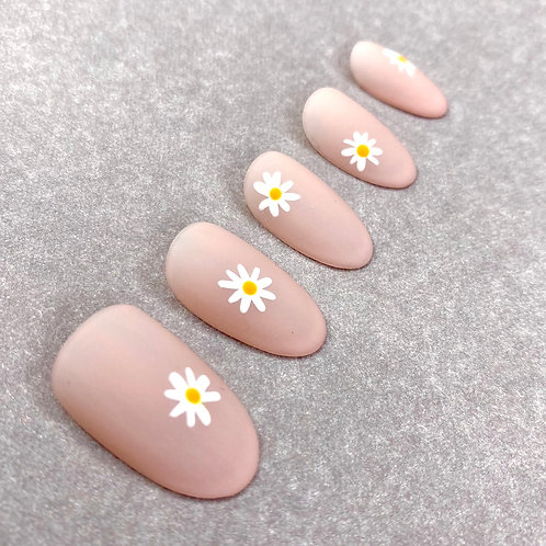 Itsy Daisies