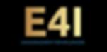 E4I 2.png