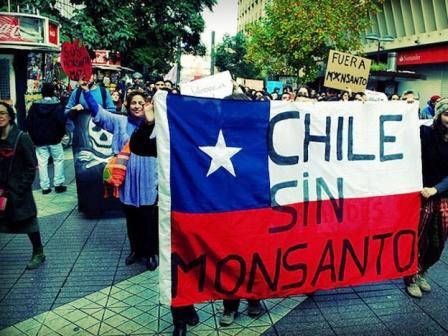chile_monsanto.jpg