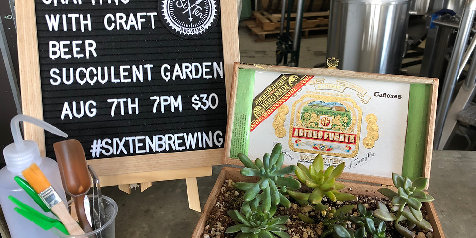 August Crafting with Craft Beer (Succulents)