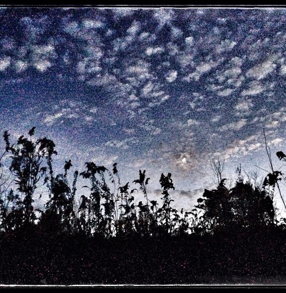 Snapseed(4).jpg