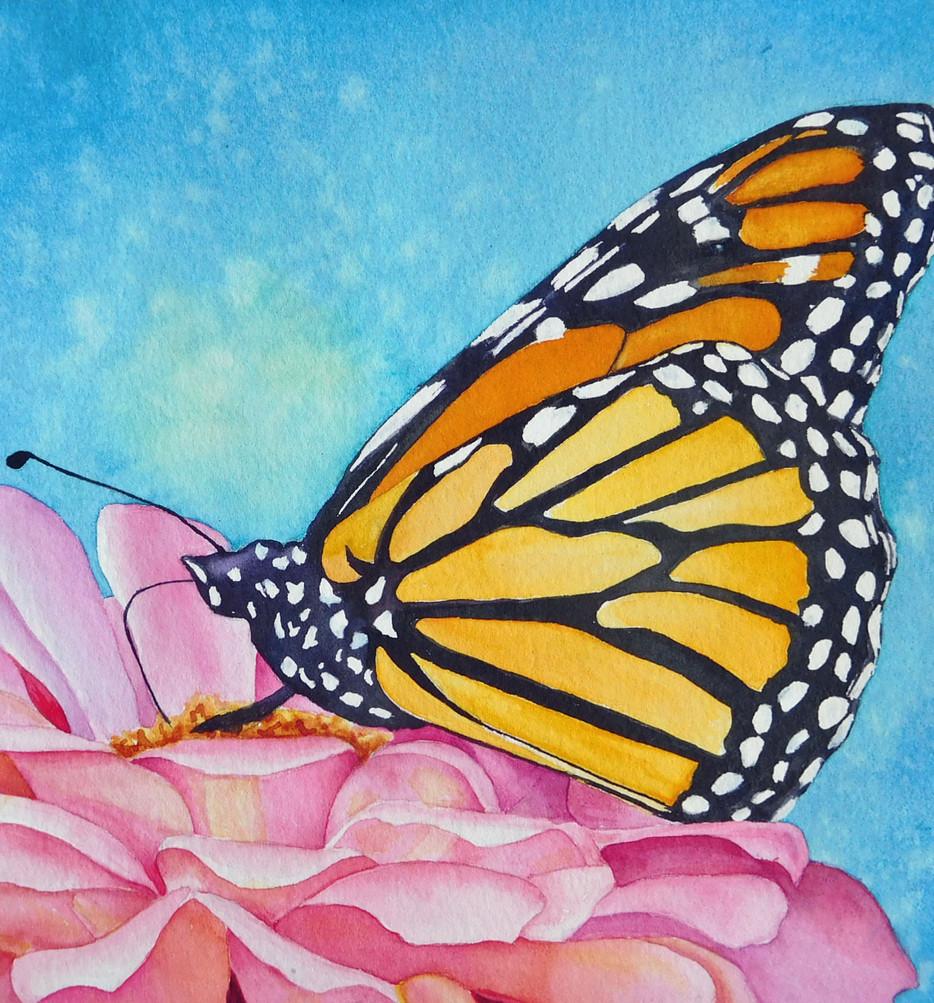 Artist Tour Monarch Butterfly.jpg
