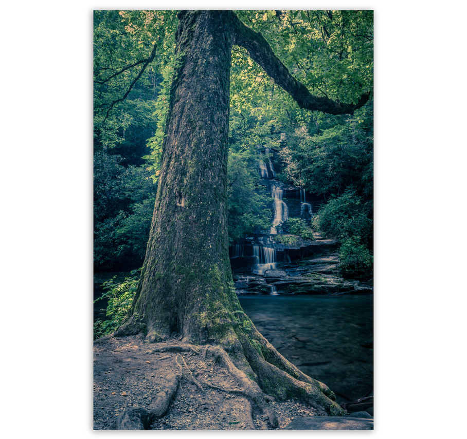 Tom Branch Falls no 1.jpg