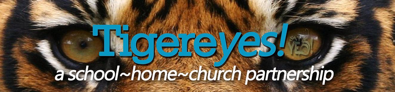 tigereyes logo.jpg
