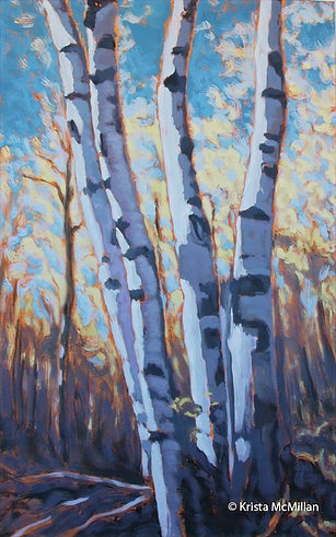 tree-art-white-birch-bruce-trail_edited.