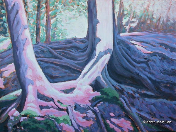 tree-art-bruce-trail-white-cedar_edited.