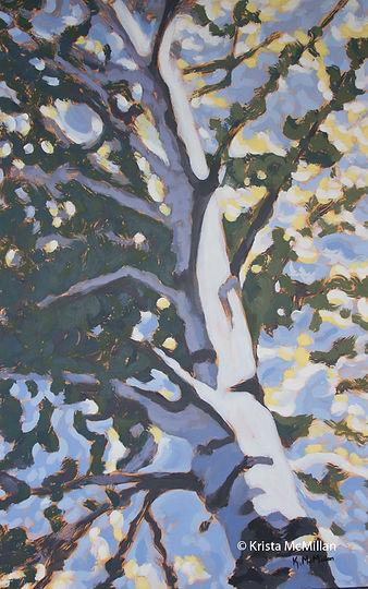 tree-painting-Beamer-memorial-white-birc