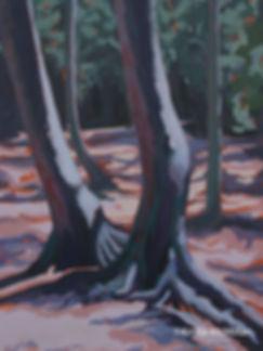 tree-art-Bruce-peninsula-national-park-c