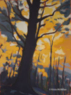 tree-art-bruce-trail-fall-maples.jpg
