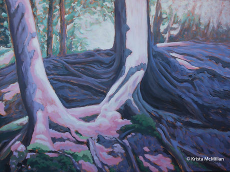 tree-art-bruce-trail-white-cedar.jpg