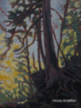 tree-art-bruce-trail-cedar-Niagara.jpg