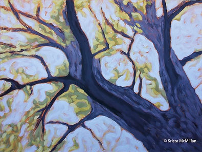 Tree-painting-Niagara-black-walnut_edite