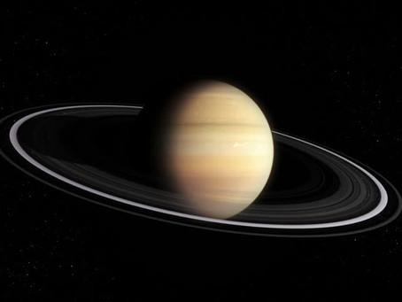 Next Please, Saturn Retrograde, 2018