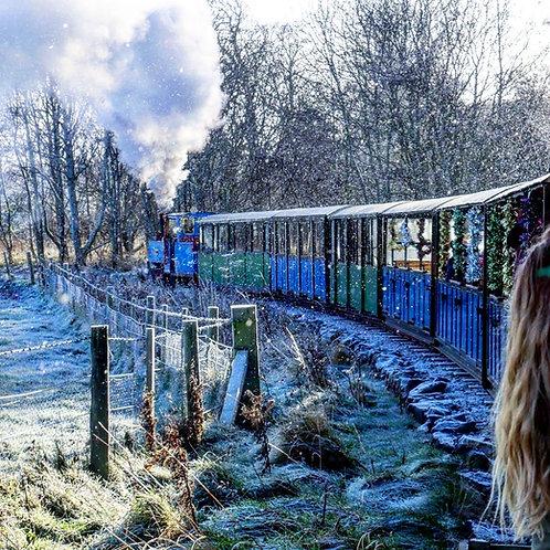 Saturday 18th Dec. 12:10pm (Steam)