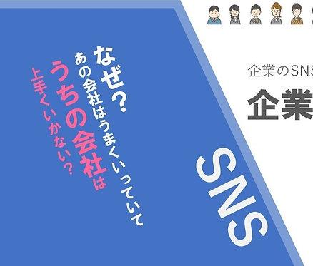 企業SNS運用[虎の巻]【PDF納品】