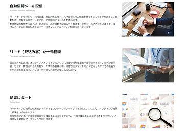 WEBMAX2.jpg
