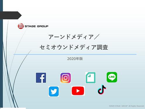 アーンドメディア調査【PDF納品】