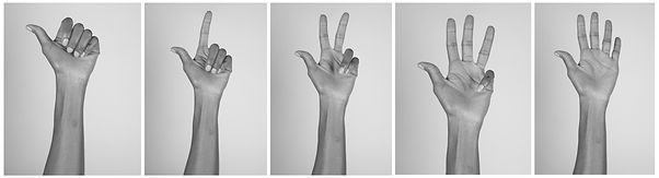 5 b&W photos of a persons' left hand, depicting a series of motions- 1st of hand with 4 fingers folded towards the palm and thumb outstretched to the side. 2nd is index finger released with the other three fingers still tucked into palm. 3rd is index and middle finger outstretched with the other two fingers tucked into palm and thumb still out. 4th is of the hand with thumb, index, middle and ring finger released while pinky is still tucked toward palm. 5th is of the hand with thumb and all fingers released, palm facing forward, as in a high-five gesture.
