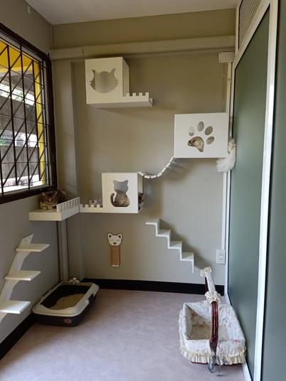 ห้อง Suite