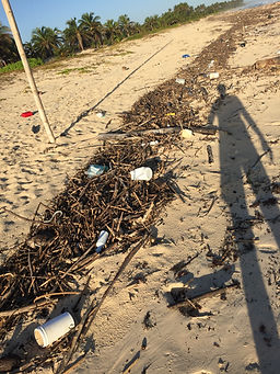 Single-use plastic pollution littered on a Caribbean beach in Mexico
