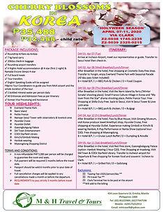 Cherry Blossoms in Korea_001.jpg