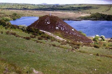 More Cardinham Moor
