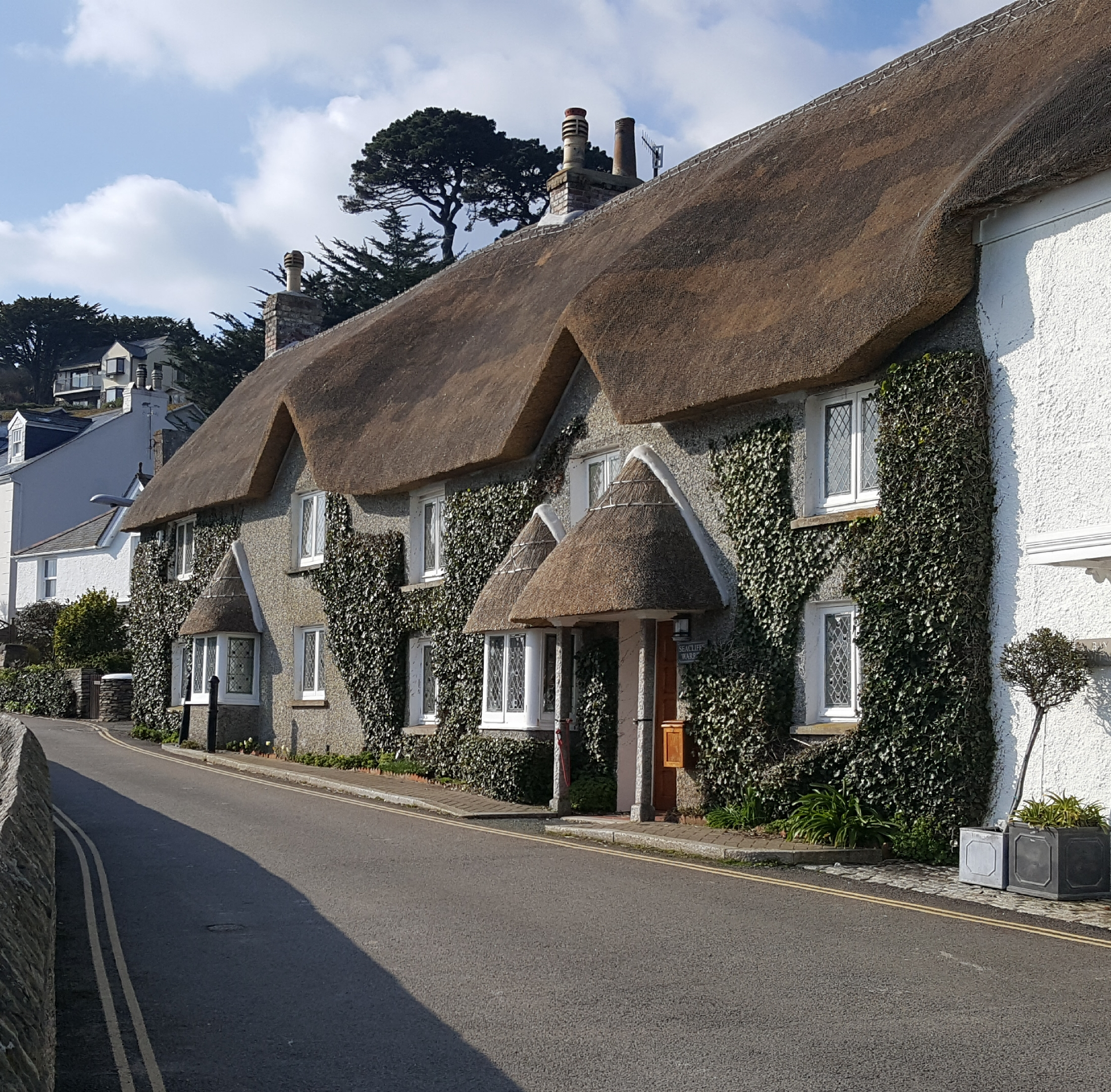 Thatched Houses - St.Mawes