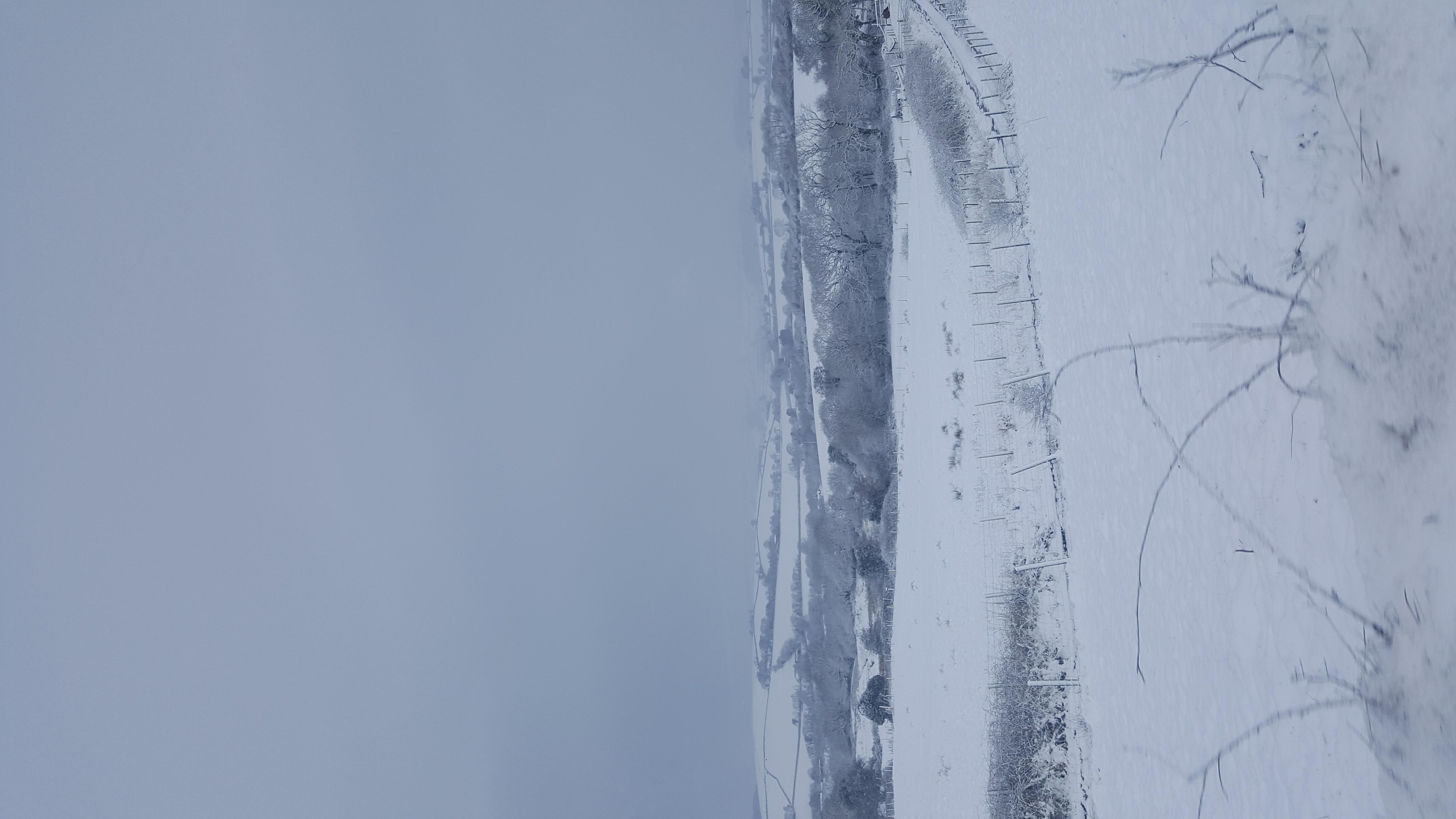 Cornish Snow Fall