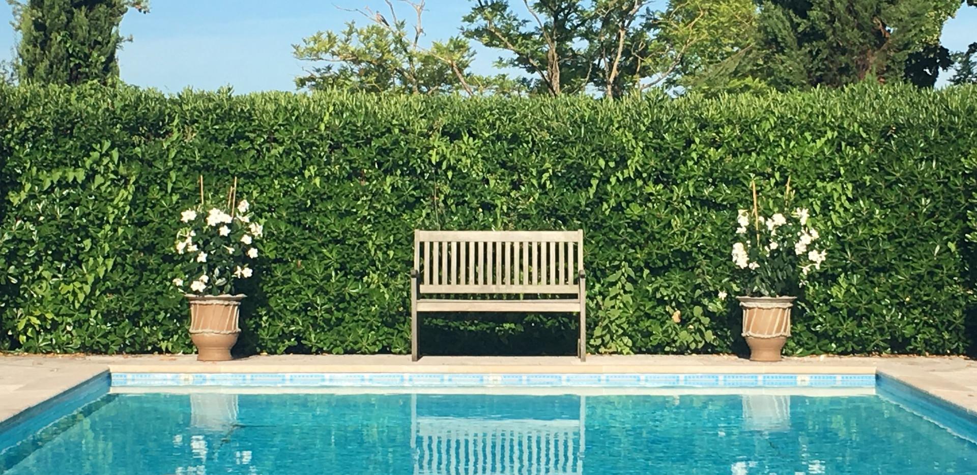 Pool for Nicola.jpg