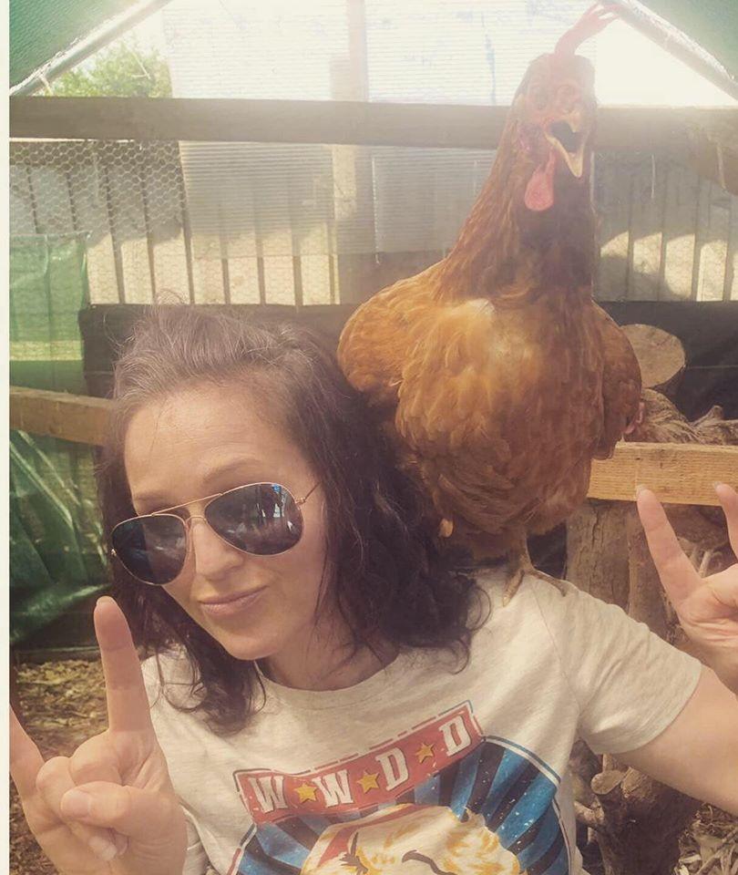 Pic chicken 2.jpg