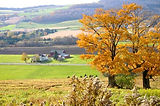 Fall Farmscape, photo by Don Barber.jpg