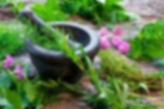 herbs_Ayurveda.jpg