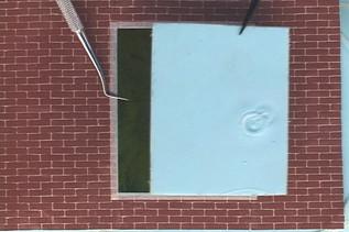 """title: 5 window - date: 2002, Single Channel, DV, 01'51"""", NTSC, SILENT, COLOR - content: 5 window - Single Channel, DV, 01'51"""", NTSC, SILENT, COLOR, 2002"""