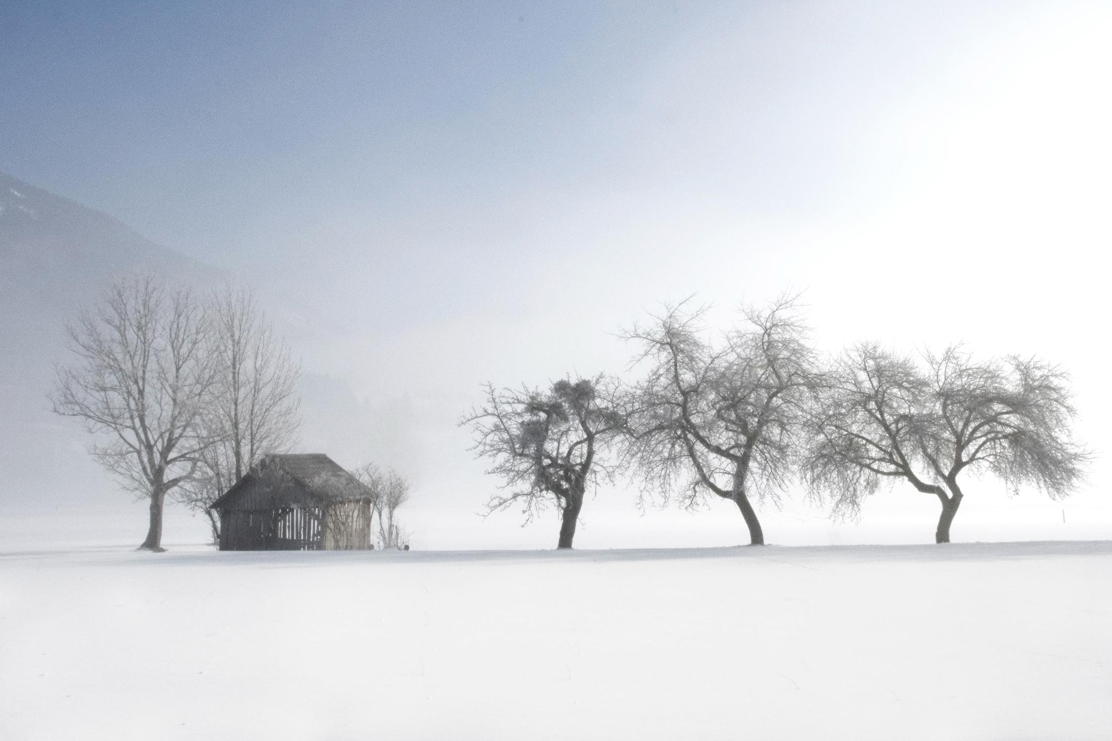 Serie las formas del invierno II