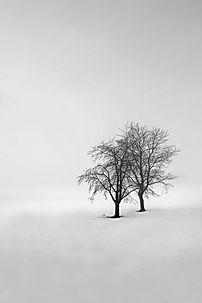 Las-formas-del-inviernoVI.jpg
