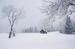 Serie las formas del invierno XII