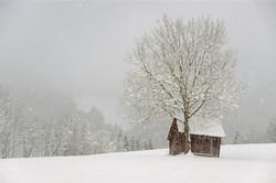 Serie las formas del invierno XI