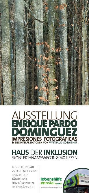 Plakat Ausstellung Enrique Pardo Domingu