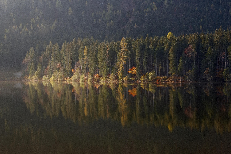 Big world. Serie las formas del otoño