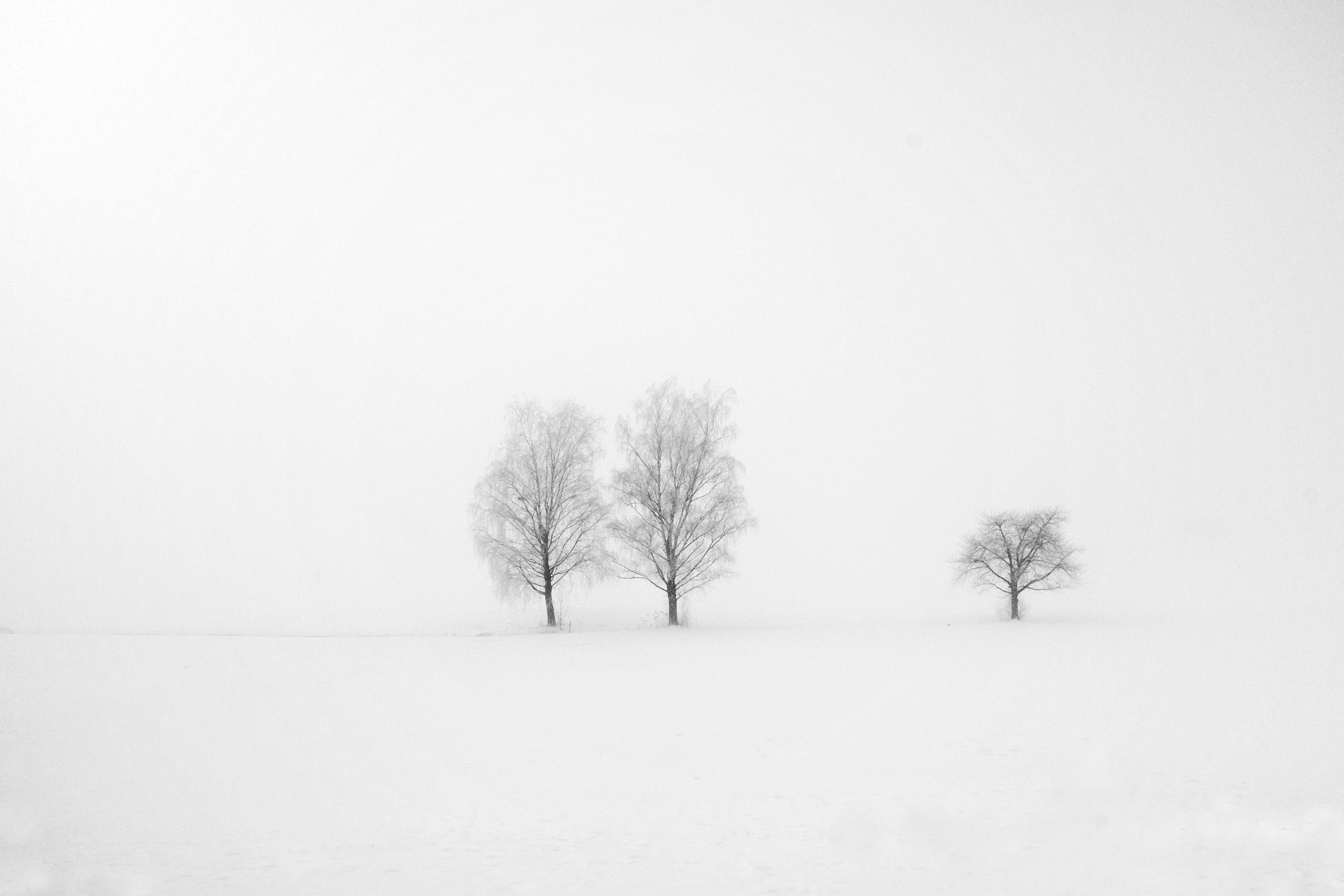 Serie las formas del invierno VII