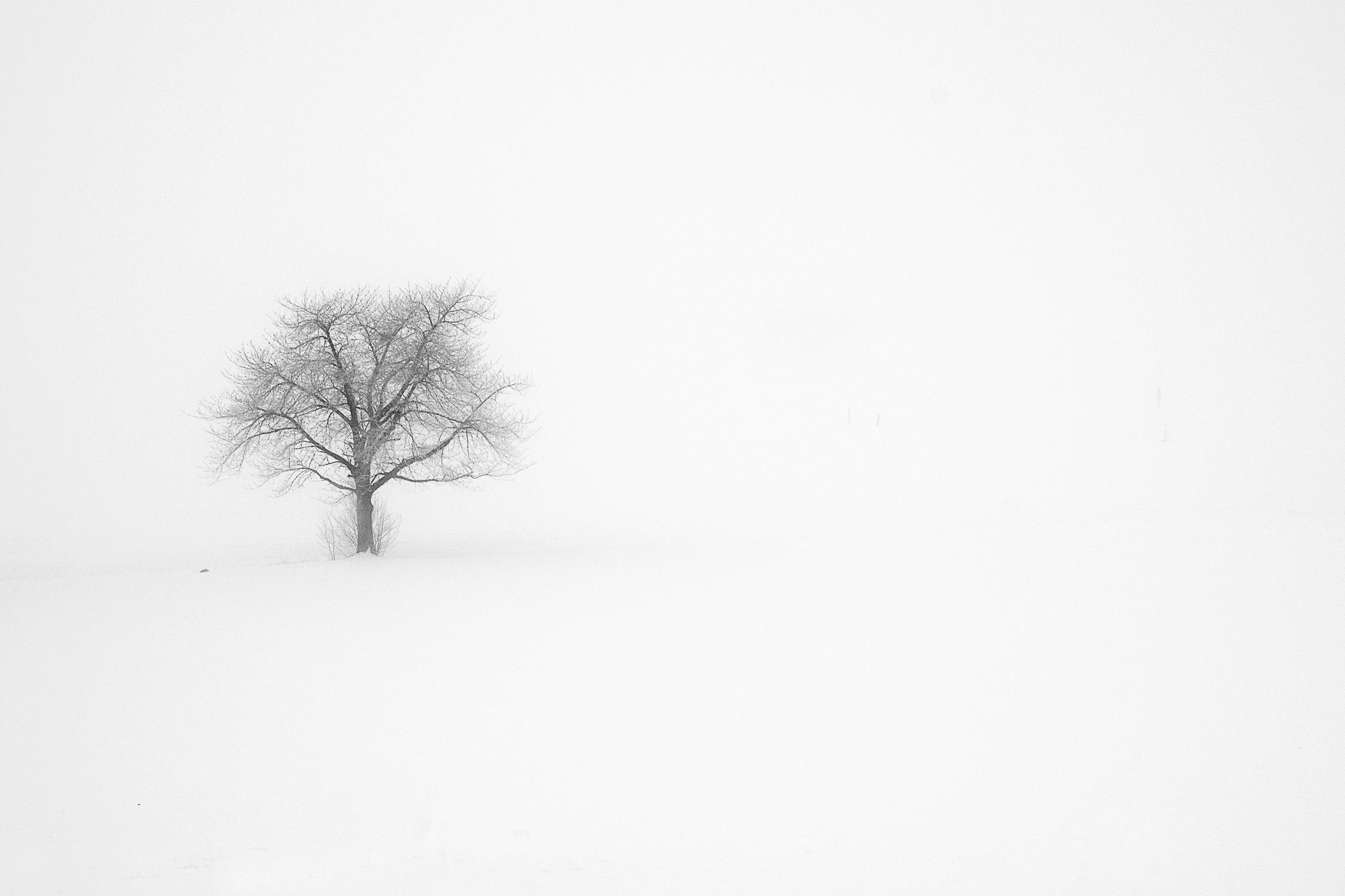 Serie las formas del invierno IX